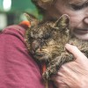 'Untouchable' Cat No One Would Hug Receives Medical Care And Flood Of Donations