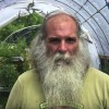 An Oasis For Bees And People Alike: How One Man Is Growing Food For Both (For Free)