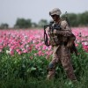 After Declaring Opioid Crisis A National Emergency, Trump Sends More Troops To Guard Afghan Poppies