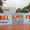 Activism Forces Whole Foods to Adopt Mandatory GMO Labeling