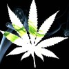 Vaporized Marijuana is a Safe and Effective Pain Treatment