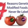 7 Reasons Why Genetically Modified Foods Will Never Be Labeled