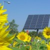The First City to Embrace Solar Powered Gardens