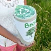 Biodegradable Urns That Will Turn You Into A Tree After You Die – Let's Start Converting Cemeteries Into Forests