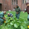 Man Creates An Organic Gardening And Theater Program For Juvenile Inmates