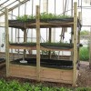 This Aquaponic Farm Holds 20,000 Lbs Of Fish And Grows 70,000 Vegetables In A 1/4 Acre Area