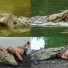 This Wild Crocodile's Amazing Human Friendship Will Make You Question Everything You Know About Animals