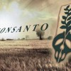 "Farmers In Africa Face Legal Penalties For Planting Crops Under New ""Monsanto Law"""
