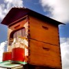 There Had To Be A Better Way To Harvest Honey From Their Beehives, So They Came Up With This!