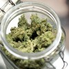 76% Of Doctors Approve Use of Medical Marijuana