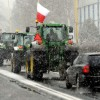 Anti-GMO Protests Rock Poland As Farmers Demand Food Sovereignty Rights