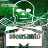 'Monster Marijuana' To Become Reality As Monsanto Patents GMO Pot