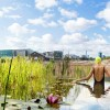 This UK Outdoor Pool Is Using Plants Instead Of Chemicals To Stay Clean