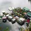 This Couple Spent 20 Years Building A Self-Sustaining, Floatable Off-Grid Island