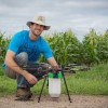 Drones Drop Beneficial Bugs On Crops As Natural Pest Control