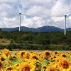 Europe Will Be 50% Powered By Renewable Energy By 2030