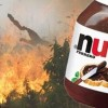 France Says Nutella Is 'Bad For The Environment'. After Reading This, You Might Too.