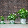 Awesome 'Origami' Pots Grow With Your Plants