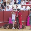 When An Activist Jumped Into A Bullfighting Ring, This Was The Crowd's Response…