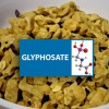 "Tests Show ""Healthy"" Kashi GoLean Cereal Has Six Times More Glyphosate Than Kellogg's Fruit Loops"