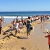 Amazing! 100 People Join Together To Rescue A Stranded Great White Shark