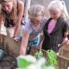 Vegan School's Lunch Program Is Transforming Kids' Relationship With Food And Gardening