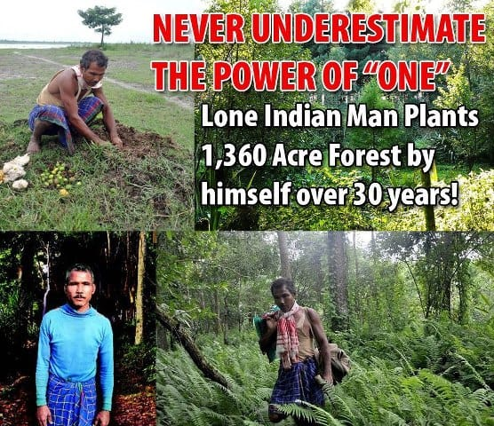 Indian Man, Jadav Molai Payeng Single-Handedly Plants A 1,360 Acre Forest In Assam