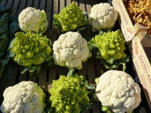 cauliflower-68791_640