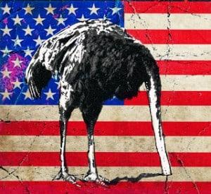 FredaAmericanOstrichAmerican Ostrich - Anthony Freda Illustration