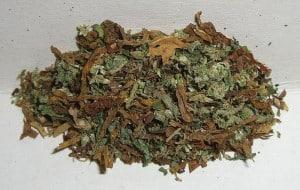 800px-Marijuana_tobacco_mixture