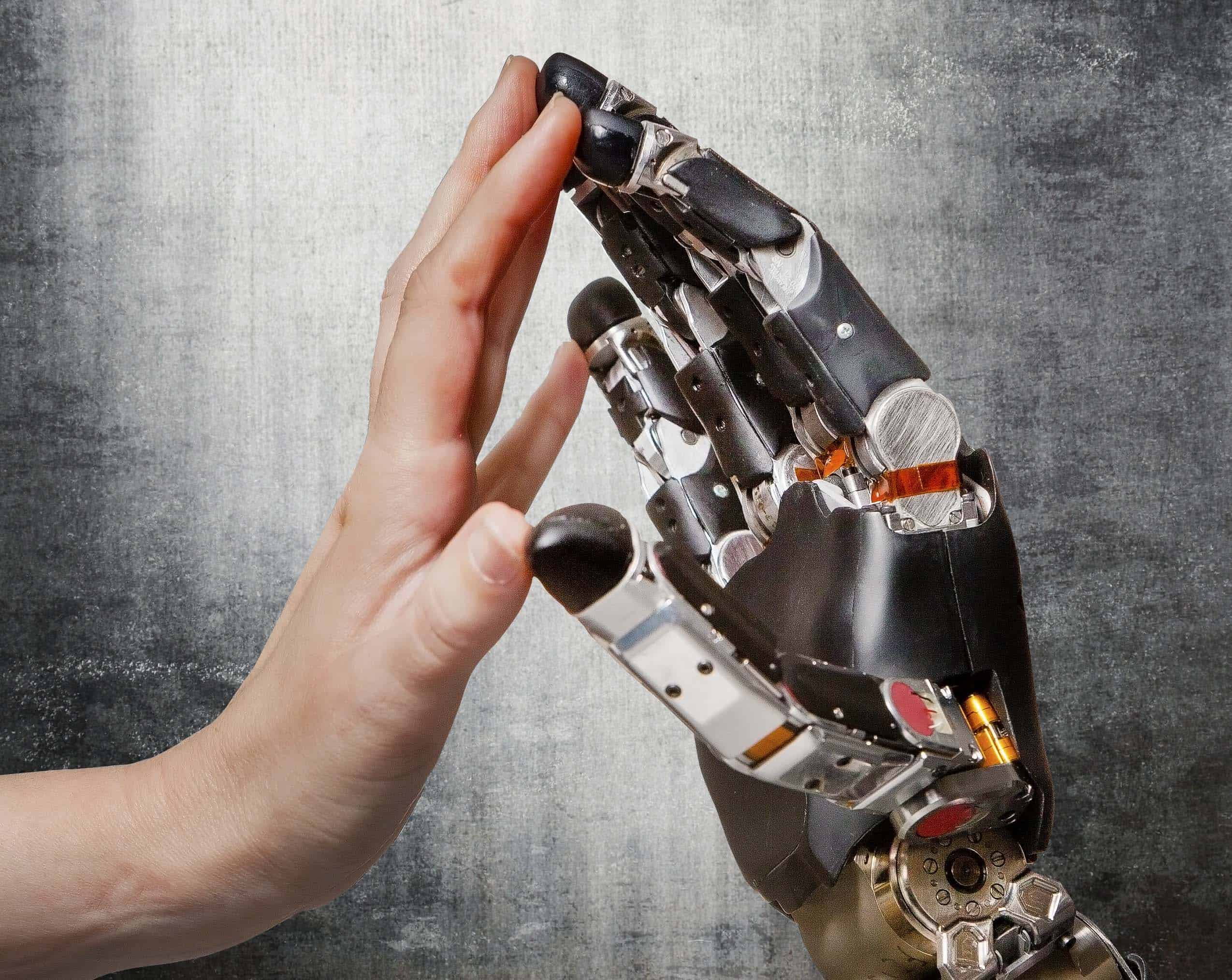 Scientists have made a breakthrough when it comes to prosthetic limbs. They've laid the groundwork for touch-sensitive limbs that could one day convey real-time sensory information to amputees via a direct interface with the brain. (Photo : Proceedings of the National Academy of Sciences, Oct-2013)