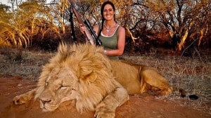 Hardcore huntress: The photograph of a smiling Melissa Bachman and the slain lion that has outraged people around the world. Photo: Twitter