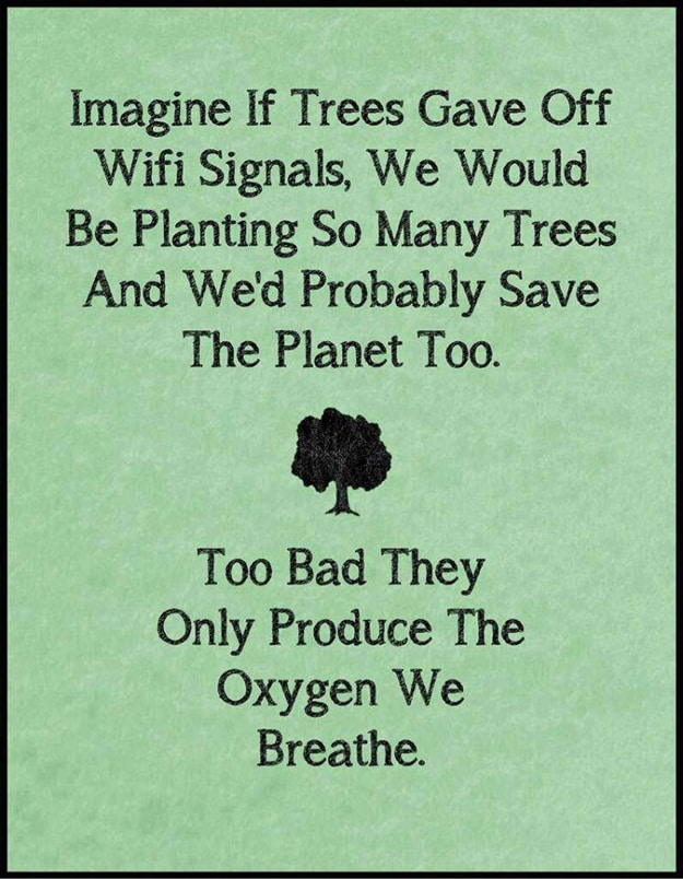 image if trees gave off wifi signals