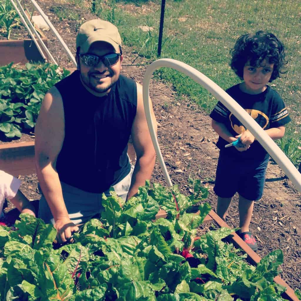 Tom and his son, Alex, in their organic garden.  Credit: Tom Arguello