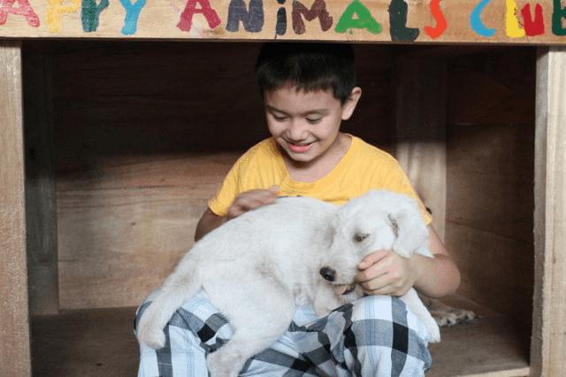 Source: Happy Animals Club