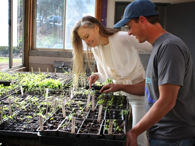 Credit: NPR Suzy Amis Cameron, wife of director James Cameron, and gardener and educator Paul Hudak inspect seedlings in the MUSE School CA greenhouse in Calabasas, Calif. Amis Cameron, who founded the school with her sister, wants the school menu to be entirely plant-based by fall 2015