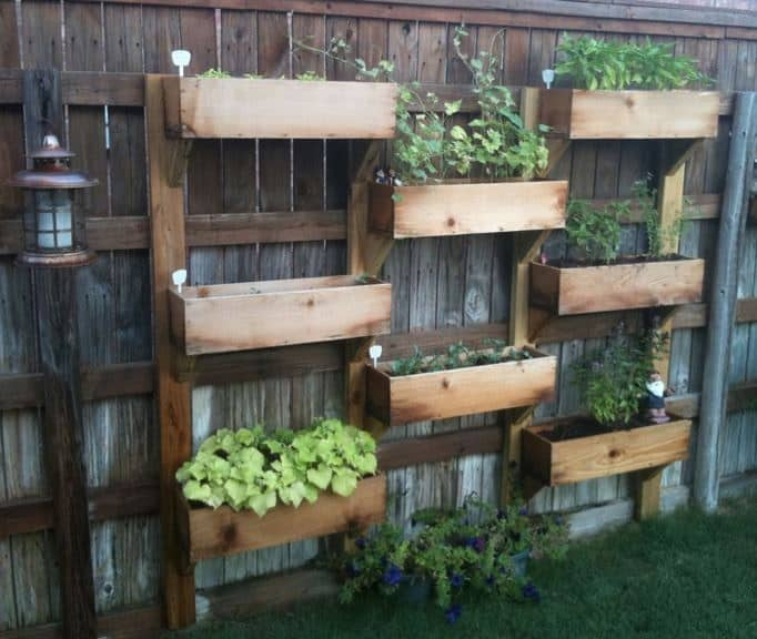 Turn A Small Space Into A Big Harvest With These Awesome