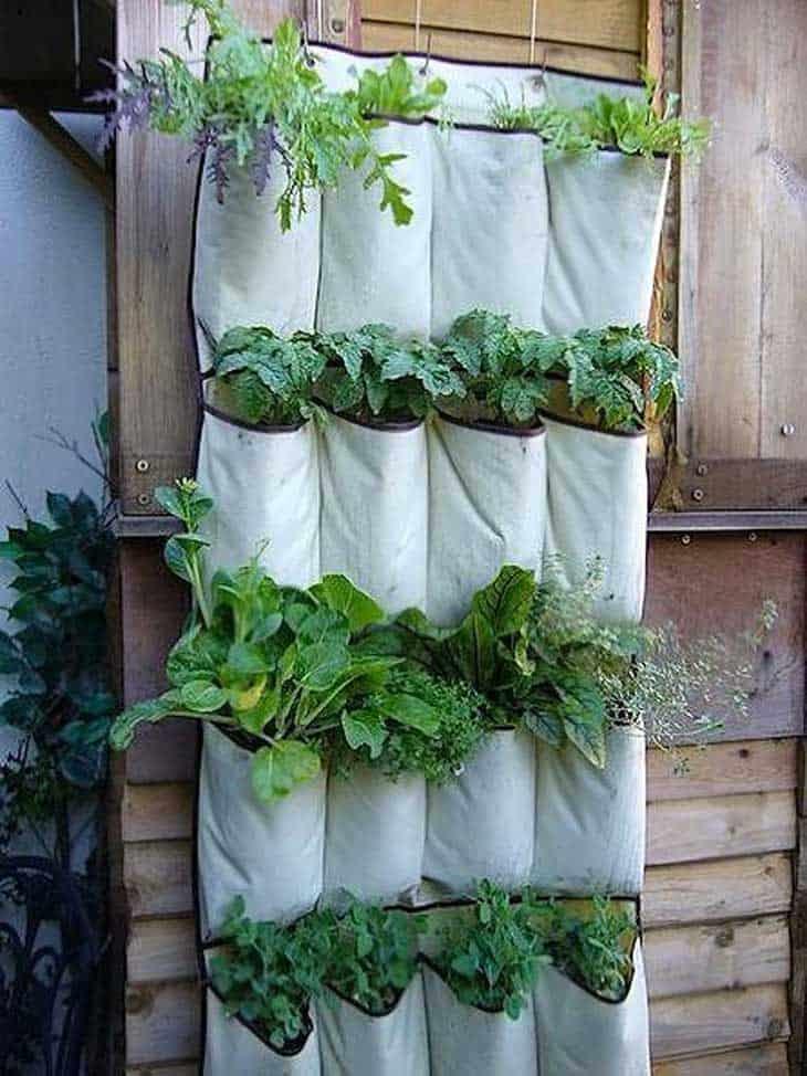 vertical-garden-2