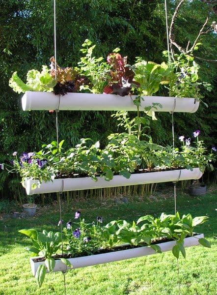 vertical garden 6