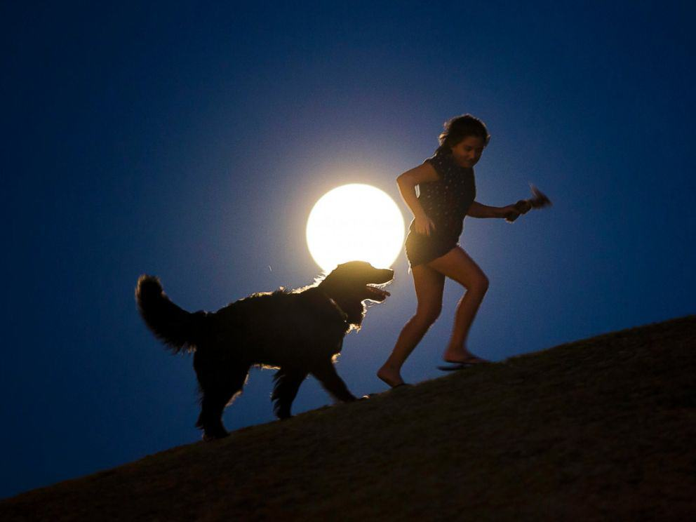 A girl plays with a dog as a perigee moon, also known as a supermoon, rises in Madrid, Aug. 10, 2014. Andres Kudacki/AP Photo