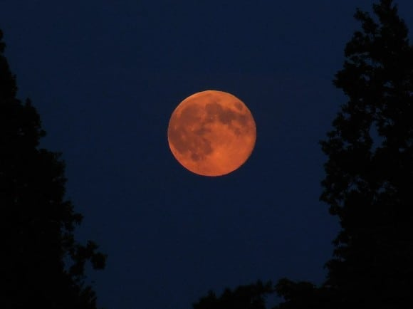 The perigee Moon from Toronto, Canada at 8:35 pm EDT. Credit and copyright: Rick Ellis.