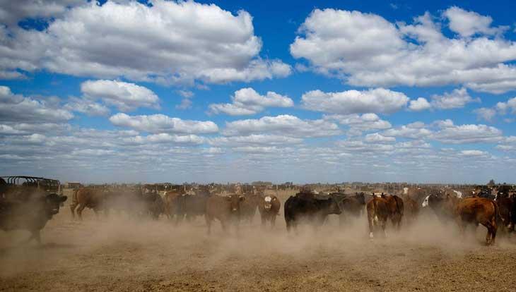 argentina-agrochemicals-013.sJPG_950_2000_0_75_0_50_50.sJPG_