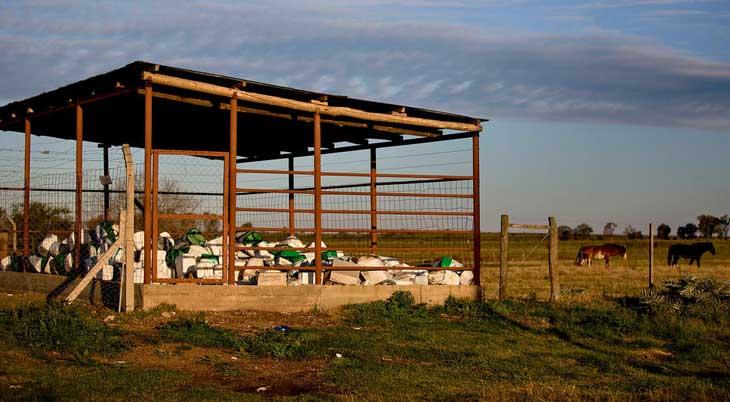 argentina-agrochemicals-018.sJPG_950_2000_0_75_0_50_50.sJPG_