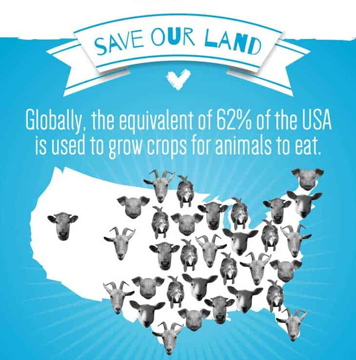 save-our-landvegan1