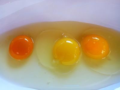 egg-yolk-colors