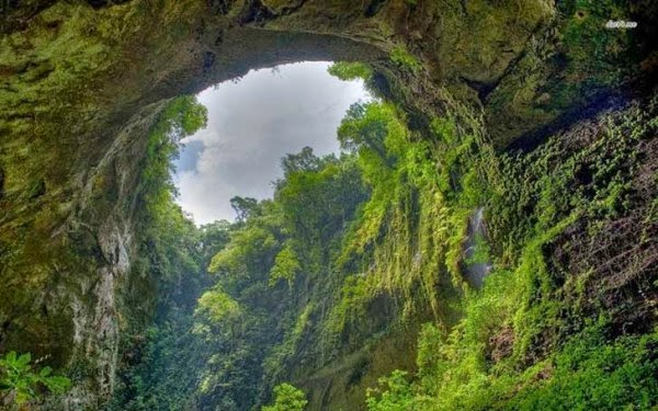Man Noticed This Hole In A Rock. But What;s Inside Has Astounded The Whole World (2)