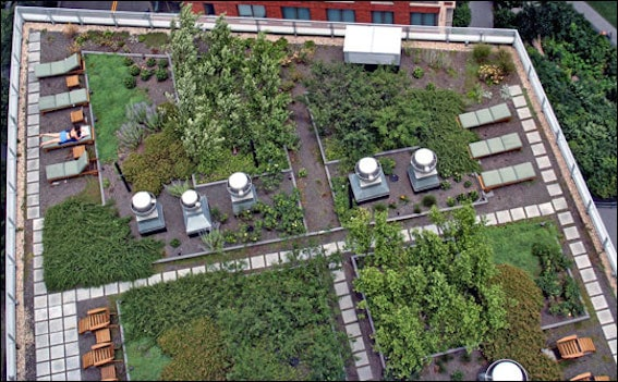 green_roof1