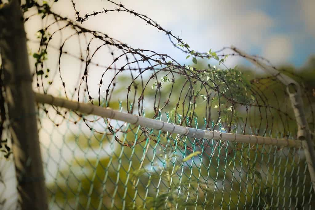 barbed-wire-600471_1280