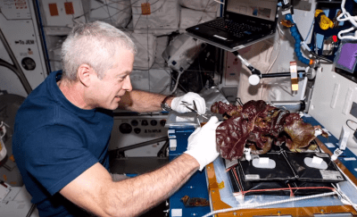Astronauts Will Eat Food They Grew Themselves In Space For First Time Ever This Week