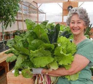 Phyllis-harvesting-greens-300x271